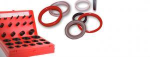 Hydraulic Seals and O Rings